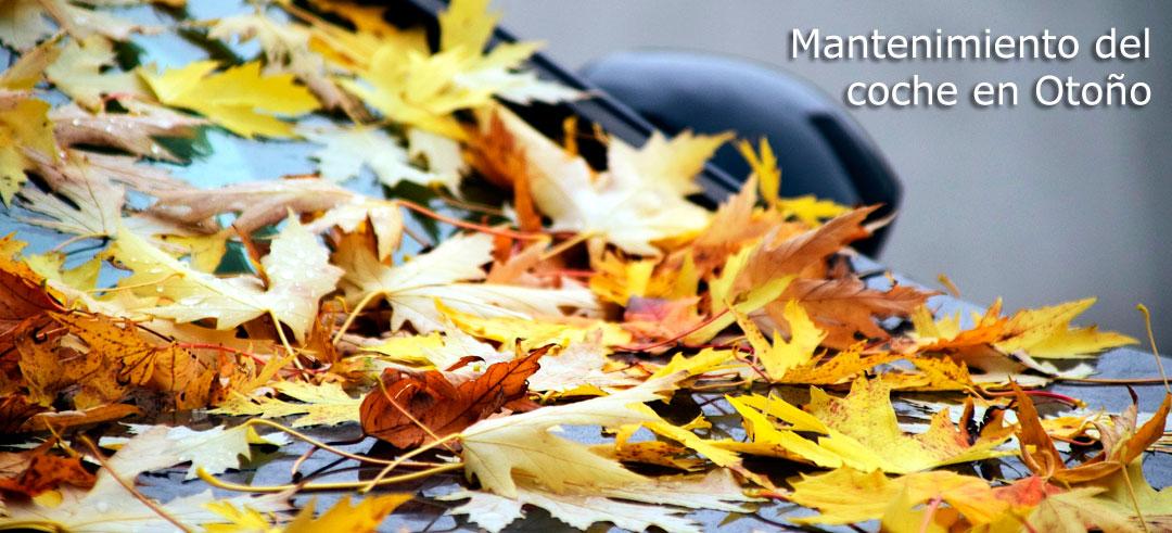 El calor y el verano se han acabado ymantenimiento del coche en otoñois coming!